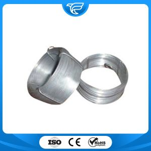 Stainless Steel Shaped Wire
